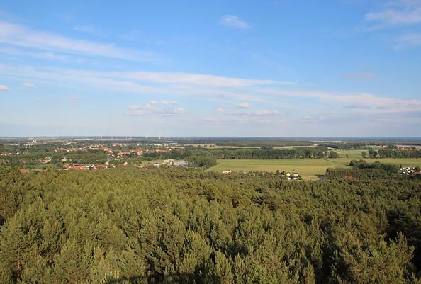 Blick vom Aussichtsturm auf dem Löwendorfer Berg, Foto: Tourismusverband Fläming e.V. / A. Stein