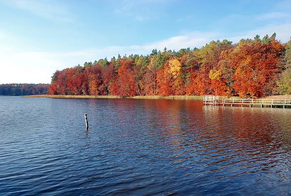 Großer Prebelower See Herbst