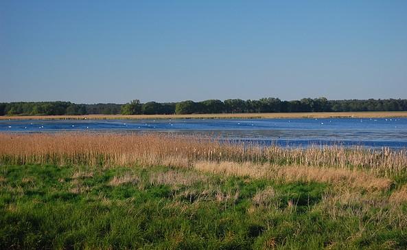 Am Rietzer See, Foto: Jan Hoffmann