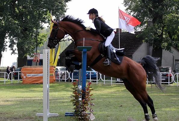 Turniersport, Foto: Pferdebetrieb Zehe