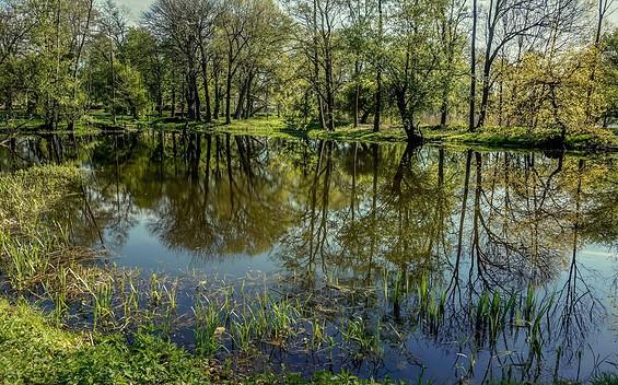 Schlosspark Plaue