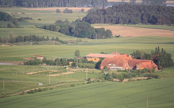 Pferdehof Ruhnau in Potzlow Abbau