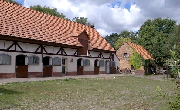 Reiterhof Richter, Reit- und Fahrschule