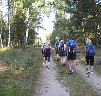 Nordic Walking Touren