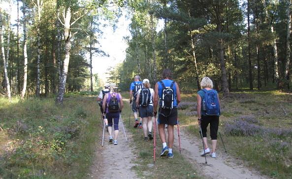 Nordic Walking rund um Lindow (Mark), Foto: Herr Wolff