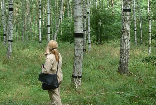 Internationaler Kunstwanderweg - Intermezzo, Foto: Naturparkarchiv Hoher Fläming