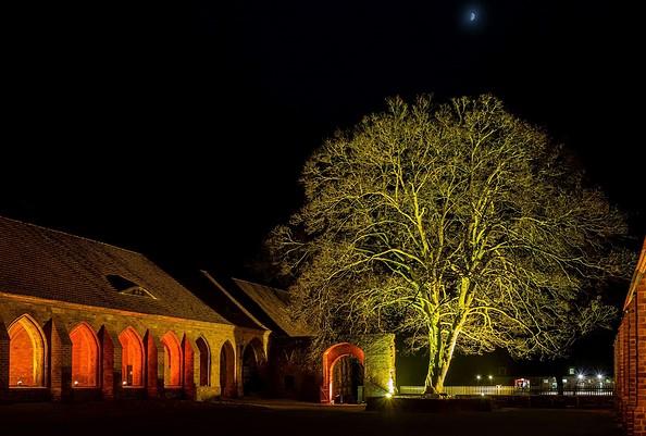 Adventssonntage im Kloster Chorin, Foto: Johannes Nadeno