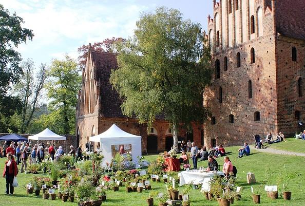 Kräuter-und Keramiktage im Kloster Chorin, Foto: Ulrike Schuhose/Kloster Chorin