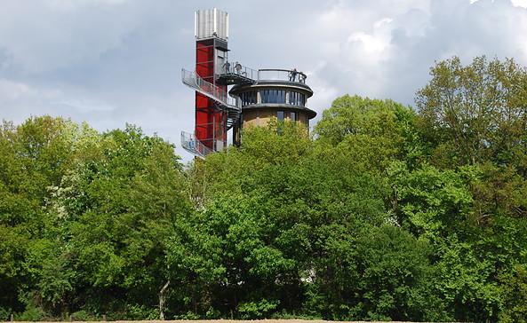 Blick auf die Aussichtsplattform, Foto: BIORAMA-Projekt