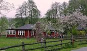 Pritzhagener Mühle, Foto: Touristinformation Buckow (Märkische Schweiz)