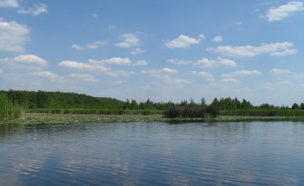 Storchentour zwischen Linum und Kremmen