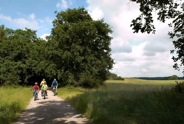 Auf dem Radweg, Foto: WITO GmbH