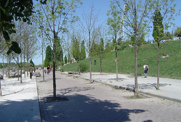 Im Mauerpark Berlin, Foto: Jan Hoffmann