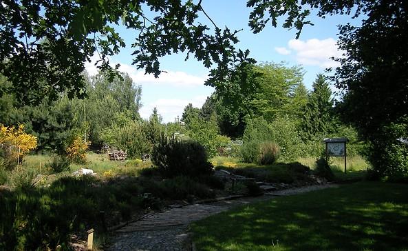 Biogarten in Prieros, Foto: VGS Dahme Spreewald