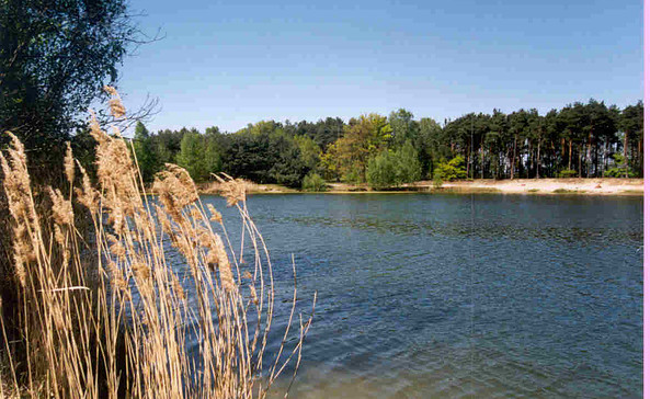 Naturbadesee Garkoschke, Foto: Amt Peitz