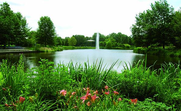 Weiher im Spreeauenpark, Foto: CMT Cottbus