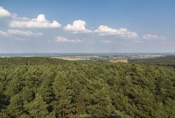 Blick vom Heidebergturm, Foto: TMB-Fotoarchiv/Steffen Lehmann