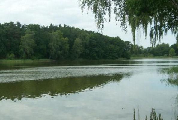 Der Beetzer See, Foto: Touristeninformationspunkt im Scheunenviertel