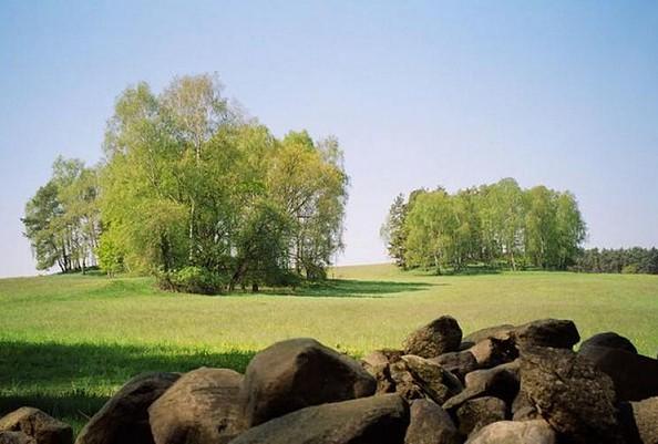Steinreicher Hoher Fläming, Foto: Archiv LUGV