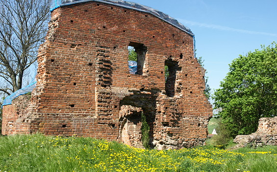 Burgruine Greiffenberg