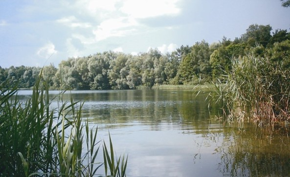 Tonsee Bestensee, Foto: Tourismusverband Dahme-Seen e.V.