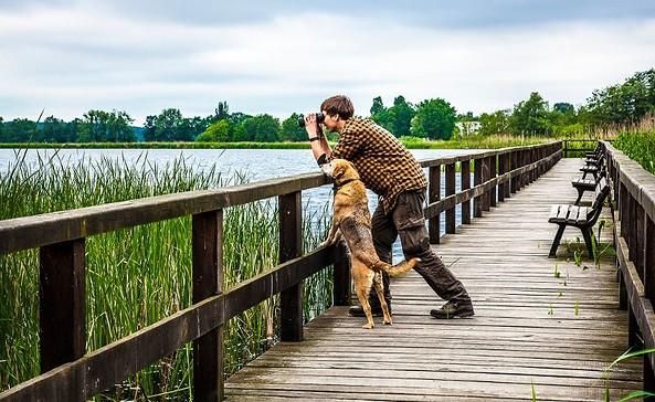 Vogelbeobachtungsteg am Blankensee, Foto: team red/Anke Großklaß