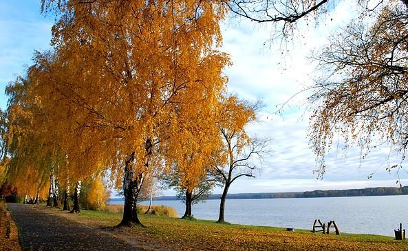 Herbst in Wendisch Rietz am Scharmützelsee © TV Scharmützelsee e.V. / Frau Morgenstern