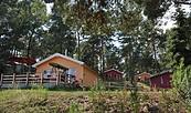 """Ferienhaus- & Campingpark """"Ludwig Leichhardt"""" in Zaue am Schwielochsee - Ferienhäuser, Foto: Schwielochsee - Tourist GmbH"""