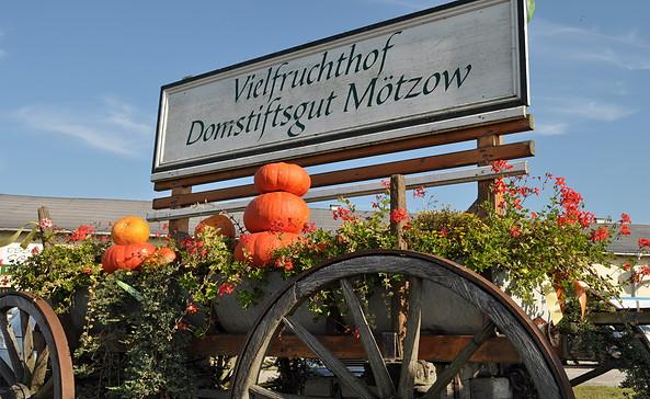 Vielfruchthof Domstiftsgut Mötzow, Foto: Tourismusverband Havelland e.V.