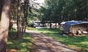 Campingplatz Am Reiherholz, Foto: Campingplatz Am Reiherholz