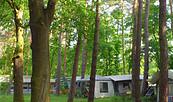 Campingverein Möllensee Nord, Foto: Gemeinde Grünheide