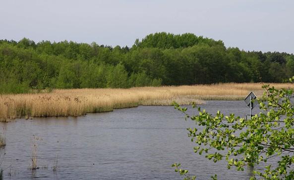 An der Dahme bei Bindow, Foto: Tourismusverband Dahme-Seen e.V.