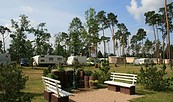 Wohnmobilstellplatz im Campingpark Buntspecht © Campingpark Buntspecht