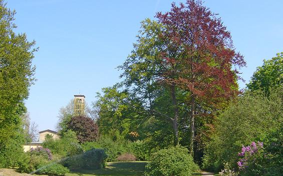 Der Marlygarten im Park Sanssouci