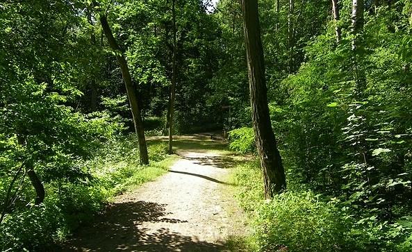 Naturpark Stechlin - Ruppiner Land
