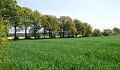 Im Havelland, Foto: TV Havelland e.V.