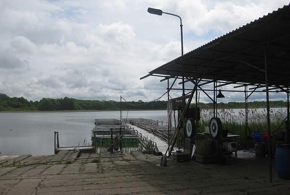 Seefischerei Trellert - Fischverkauf und Bootsverleih, Foto: tmu GmbH