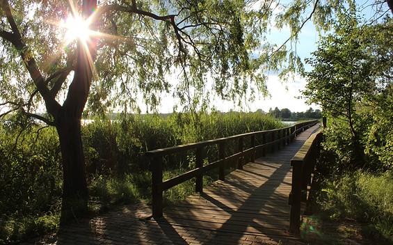 """16. Etappe """"66-Seen-Wanderweg"""": Das Vogelparadies"""