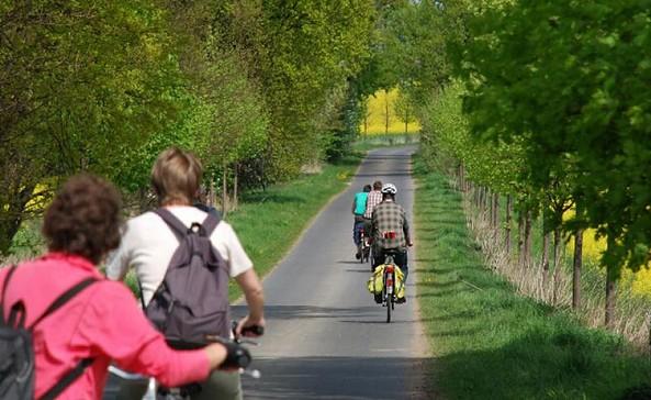 Eine Radtour im Havelland, Foto: Tourismusverband Havelland e. V.
