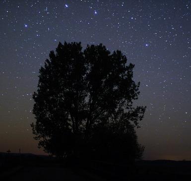 Meerblick im Westhavelland - Romantisch unterm Sternenhimmel