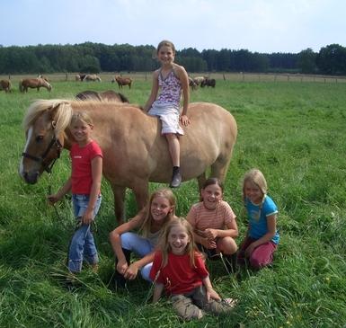 Reitferien für Kinder und Familien (6 Übernachtungen So-Sa)