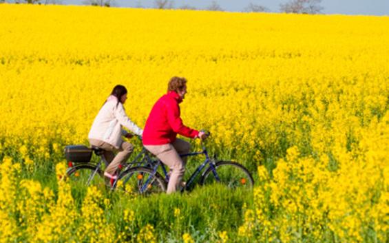 """Natur pur - Radwandern ohne Gepäck"" - 5 Tage Radtour mit Gepäcktransport"
