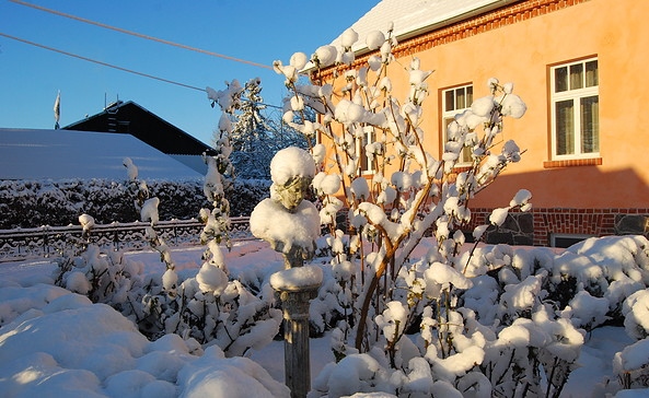 Alter Garten Feriendomizil im Winter