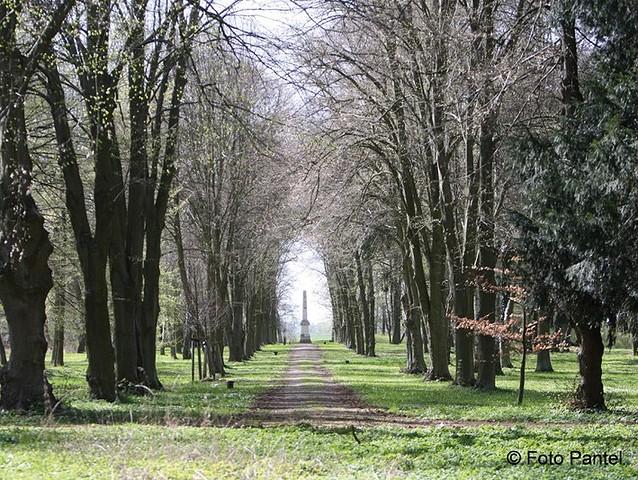 Schlosspark mit Obelisk