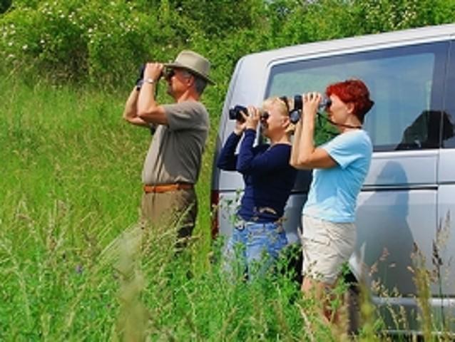 Uckermark Safari